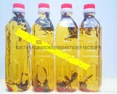 scorpions liquor