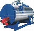 Oil(Gas)-fired boiler (DONGYUE BRAND)