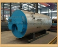 Wns/szs Series Fuel Gas Boiler, High Quality Natural Gas Boiler Parts