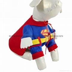 狗狗超人装