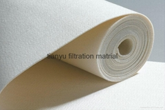 PPS Non Woven Fabric power plant