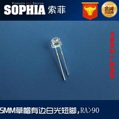 F5草帽LED二極管