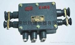XBT-1.0-20对系列矿用隔爆型通讯电缆分线箱