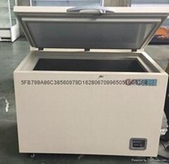北京零下-35度金槍魚冷凍保存箱