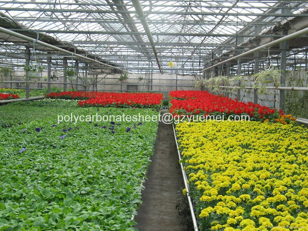 polycarbonate sheet for greenhouse  4