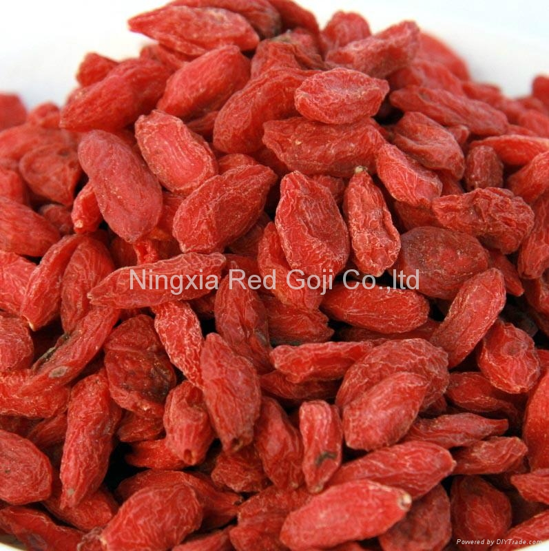 Dried Goji Berry 1