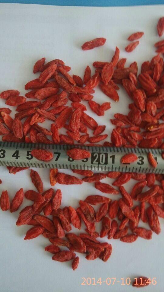 Bulk goods of New crops 1