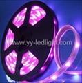 Flexible LED Ribbon Strip SMD 5050 RGB Light