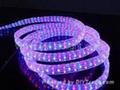 LED Rope Decoration Light