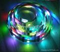 Rigi SMD LED Flexible Neon RGB Lighting 12V with LDP6803 IC