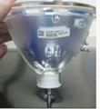 R9842020 大屏幕灯泡 2