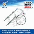 K/E型壓簧式熱電偶WRNT-