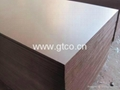 construction plywood/shuttering plywood