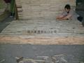 blockboard 5