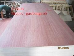Bintangor plywood
