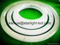 LED Round tube G10Q Tube 14W
