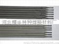 TS306防水焊条 2