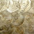Shell wall paper PJ001P
