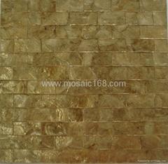 天然金色软贝装饰板