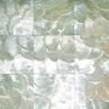 capiz Shell wall paper, shell mosaic white color