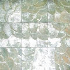 白色鏡貝貝殼紙
