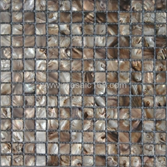 Shell mosaic tile for wa