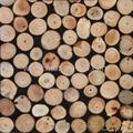树枝装饰板 2