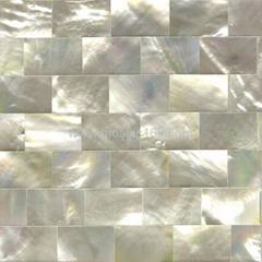 白蝶贝背景墙装饰板