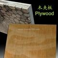 室内高低不平树枝板 3D墙板 2