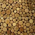 高低不平树枝板 3D墙板 3