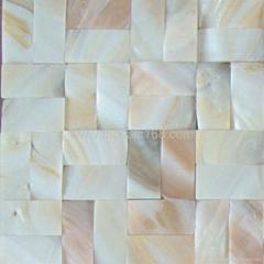natural Shell mosaic pool mosaic