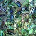 green paua shell panel