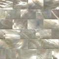 白蝶贝背景墙马赛克装饰板 2