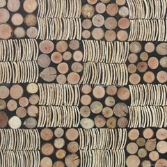椰条树枝家具板