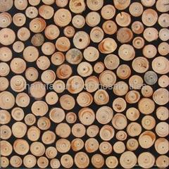 圆形树枝台面装饰板