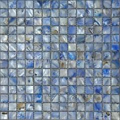 blue color shell mosaic