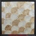 capiz Shell wall paper mosaic