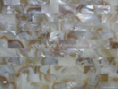 油花淡水貝裝飾板