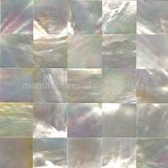 White mop panel  pearl mosaic