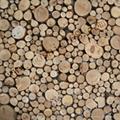 高低不平树枝板 3D墙板 5