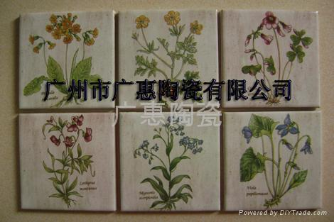 Supply Of Water Transfer Printing High Temperature Ceramic Tile Sticker Decal 1