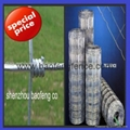 Field Fence sheep wire cattle fence
