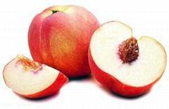 Apricot, plum, peach processing line