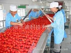 果蔬加工整線交鑰匙工程番茄加工設備
