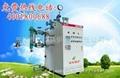 电热蒸汽锅炉 1