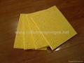 biodegradable sponge cloth