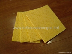 biodegradable sponge cloth
