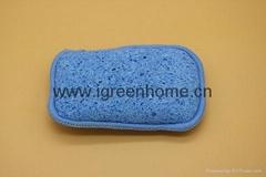 dual cellulose sponge pa
