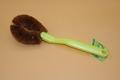 coconut fiber kitchen brush