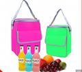 promotion snack cooler bag